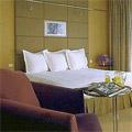 Hyatt Regency Hotel Paris Airport